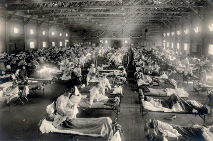 predvarietlnye-itogi-epidemii-grippa-na-bryanshchine-5-smertey-15255