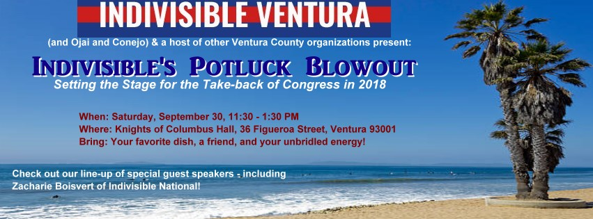 Indivisible's Potluck Blowout – Setting the Stage for the Take-back of Congress in 2018! Speakers Galore!