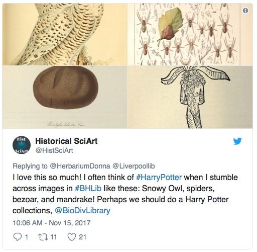 biodiversity one