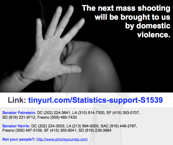 Extend the protections against domestic abusers. YES on S.1539.