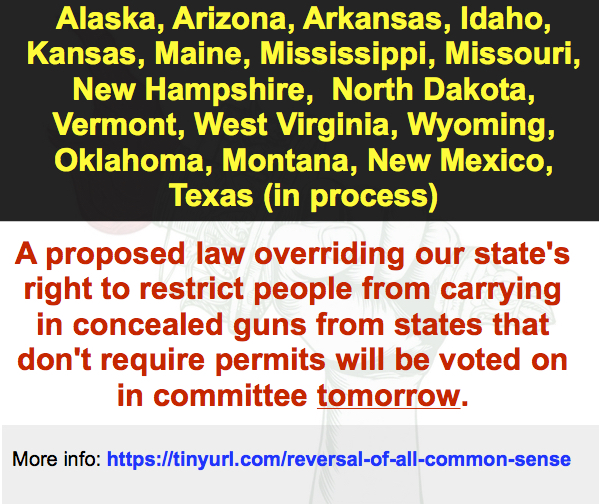 "Kill this ""Concealed-Carry-for-Everyone"" nonsense in committee. Before someone gets hurt."