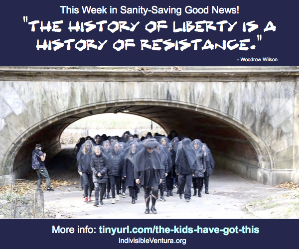 "Sanity-Saving Good News – ""History of Resistance"" – Edition"