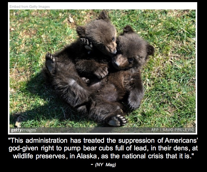 Thurs 5/31: They tear babies from mothers at the border. Now they want to kill bear cubs in their dens. It's just another day in GOP-world. Comments due Sept. 6th.