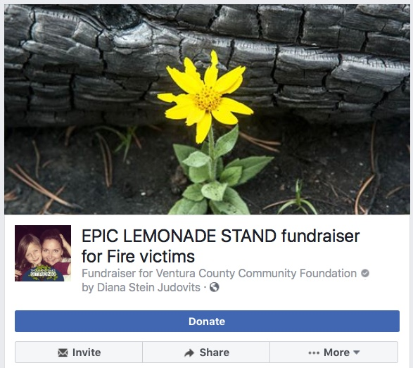 Lemonade stand.jpeg