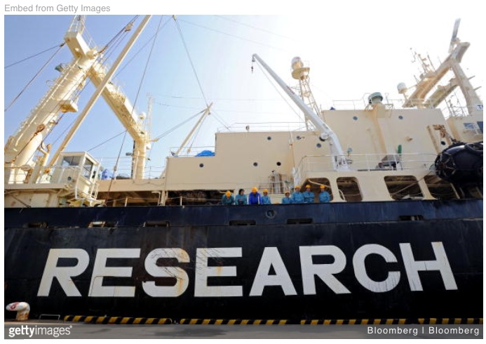 "Fri – 1/25: Part 2 – Update! ""RESEARCH"" means ""whale hunt"" in Japanese & it's coming to an ocean near you. Deadline 1/30 – email against Japanese whaling."
