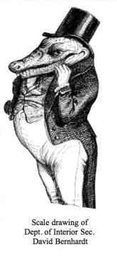 David Bernhardt single
