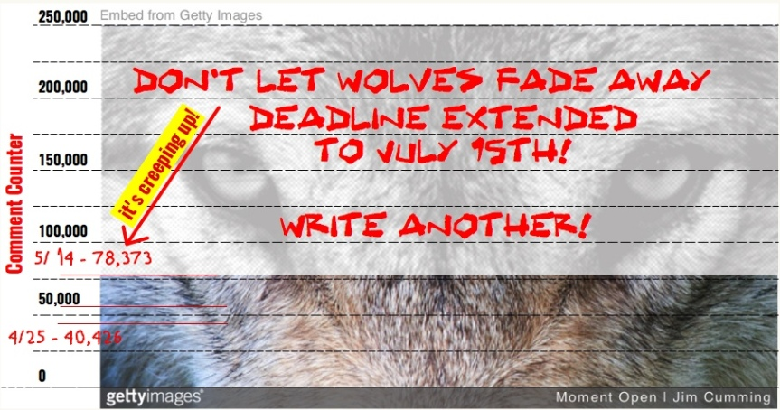 Tues 5/14:  Protect our wolves – Part 3. More time = more comments! Also, call your state senator on CA anti-trapping bill AB 273!