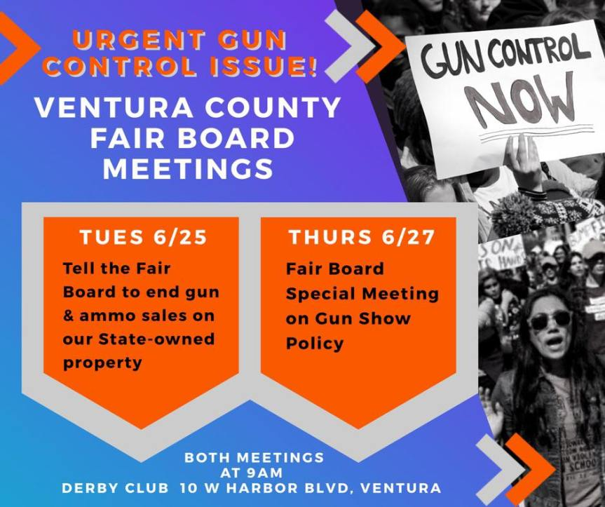 Mon 6/24: Mark your calendars. 2 gun show meetings!