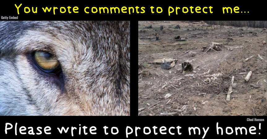 "Mon 8/26: Deadline Tonight, by 11:59 EST…The Trump administration is handing over our national forests to industry & ""right-sizing"" our ability to comment!"