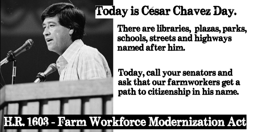 Wednesday 3/31: Cesar Chavez Day – Two actions!