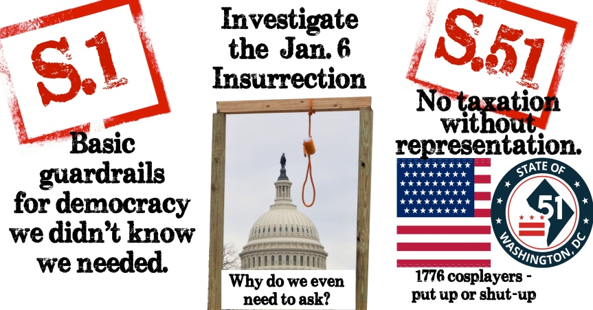 Rep. Cheney just accused her own party of undermining democracy. It's up to us to save it with (3) basicactions.